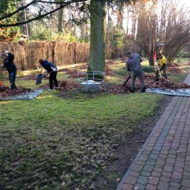 sprzątanie ogrodu Warszawa